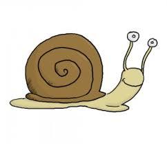 Dessin d'escargot - Moufle.net