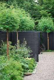 thrilling wooden garden fencing ideas