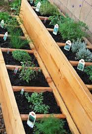container gardening raised herb