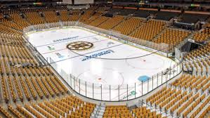 td garden changed the colour of its