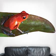 Peel And Stick Strawberry Poison Dart Frog Wall Decal Life Size Animal Wall Graphics