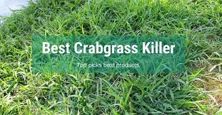best crabgrass 2020 top picks