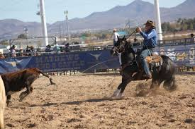 first ever world series of team roping