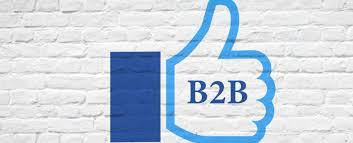 Do Facebook Ads Work for B2B Lead Generation? | iWebContent