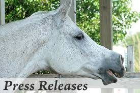 Health Canada Approves Equisource S New Joint Health And Anti Inflammatory Supplement Hyco Flex The Horse