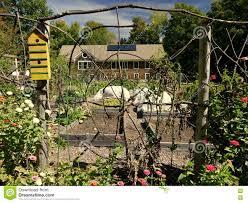 Organic Garden Folk Art Yellow Bird House Twig Fence Stock Photo Image Of Timber Louver 77889088