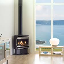 gas fires rinnai regency and