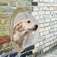 Pet Peek Fence Window Look Out Dome Insert Clear Acrylic Viewer For Pets Dog Cat