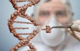 SpoudaZO.gr - Από τη θεραπεία του καρκίνου μέχρι την αθανασία: Πότε  περιμένουμε τις μεγαλύτερες ανακαλύψεις