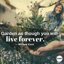 inspirational gardening quotes mother nature network