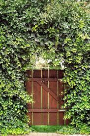 17 Best Garden Gates Ideas For Beautiful Garden Gates