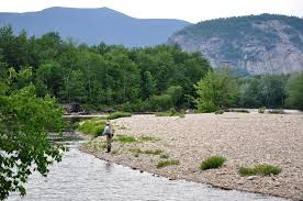 New Hampshire's Saco River: We Deserve Better — Native Fish Coalition