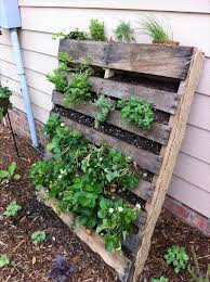 I Have Been Developing An Obsession With Pallets And Have Found 20 Cool Tutorials To Elevate Their Look A Palette Garden Vertical Garden Diy Herb Garden Pallet