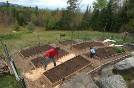 gardening terraced raised beds