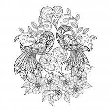 Birds In Love Zen Doodle Kleurplaat Premium Vector