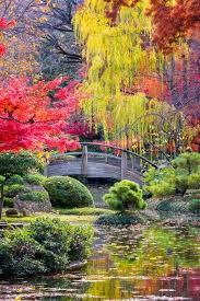 Los colores de la naturaleza. Images?q=tbn%3AANd9GcRds8VfcQ_44Hb5r-3C7cCA4lpVeNxiJGihKA&usqp=CAU