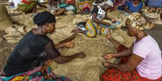 pauvres paysans jeuneafrique com