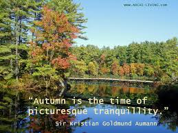 autumn quotes and sayings archi living com