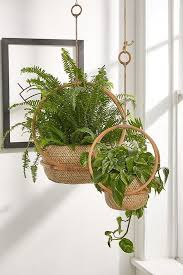 margot 7 hanging planter plants for