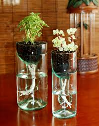 diy glass planter room decorating ideas