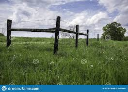 H Brace On A Barbed Wire Fence In Springtime Stock Photo Image Of Perspective Distance 177673698