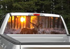 Buck Elk Sunset Rear Window Graphic Miller Graphics