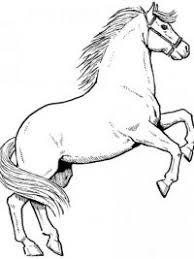 30 Kleurplaten Paarden Tip Gratis Te Printen Topkleurplaat Nl