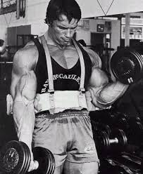 arm blaster exercises up your