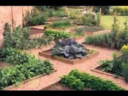 diy backyard vegetable garden