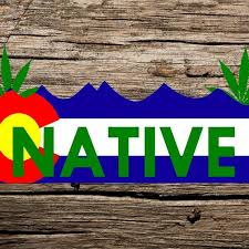Colorado Native With Pot Leaves 6 Printed Car Sticker Etsy