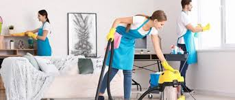 3 Tips to Develop House Cleaning App To Disrupt Online Cleaning Industry