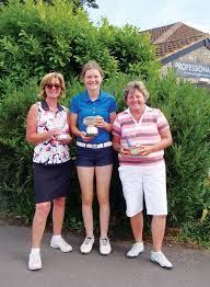 Abby is Farrington Park's Champion | News | The Midsomer Norton & Radstock  Journal