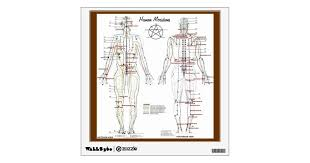 Human Meridians Pressure Point Chart Wall Decal Zazzle Com