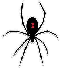 Amazon Com Black Widow Spider Graphic Vinyl Sticker Waterproof Decal Clothing