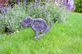 Dog Proof Garden Fencing The Ultimate Dog Proof Gardening Guide