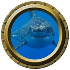 Hungry Shark Porthole Wall Decal 24 Tall X 24 Wide By Wilsongraphics 30 00 Usd Korabl Holst