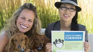 Cause 4 Canines on Oct. 22 raises funds to stop dog meat trade |  InsideHalton.com
