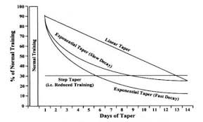 your taper questions answered bsc