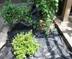 using weed barrier cloth information