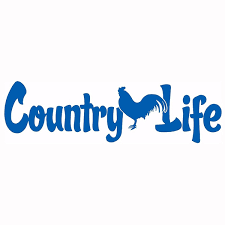 Country Life Living Rooster Chicken Car Truck Window Laptop Vinyl Decal Sticker Rear Window Car Sticker Wish