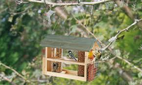 wooden bird feeding station groupon