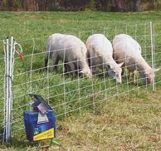Electric Fence Inspection Internachi