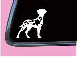 Amazon Com Harlequin Great Dane Uncropped Tp 552 Vinyl 6 Decal Sticker Dog Breed Handmade