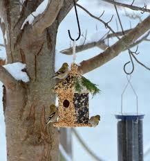 nichoir à oiseaux maison et mangeoire