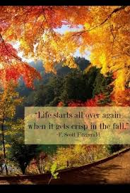 fall quote quote number picture quotes