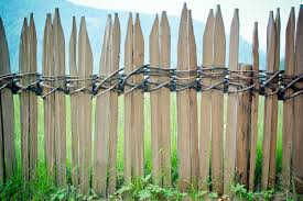 Free Images Nature Branch Flower Italy Agriculture Twig Braid Wicker Border Bamboo Limit Dolomites Woven Garden Fence South Tyrol Wood Fence Battens Paling Grass Family Plant Stem Outdoor Structure Home Fencing
