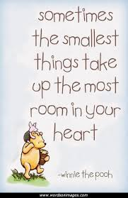 quotes about small happiness quotes