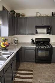 navy bean lane gray kitchen cabinets