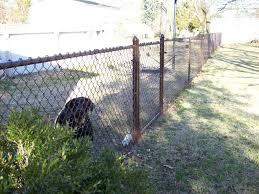 Residential Chain Link Fencing Albemarle Fence Company Inc