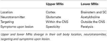 frontiers motor neurons and the